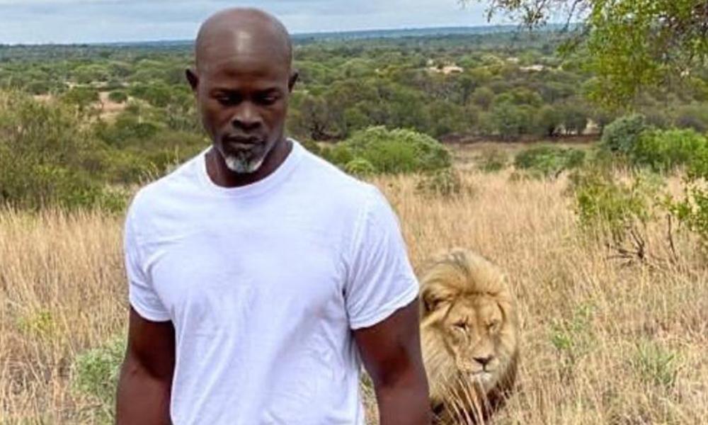 Djimon Hounsou : Présent dans la suite d'un célèbre film d'horreur !